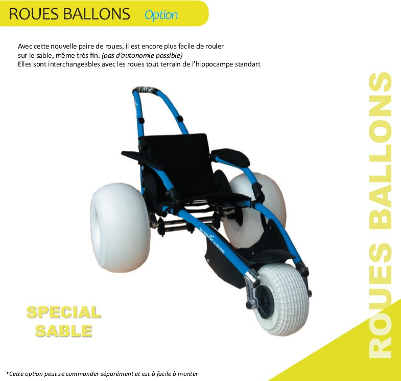 Roues Ballons Hippocampe